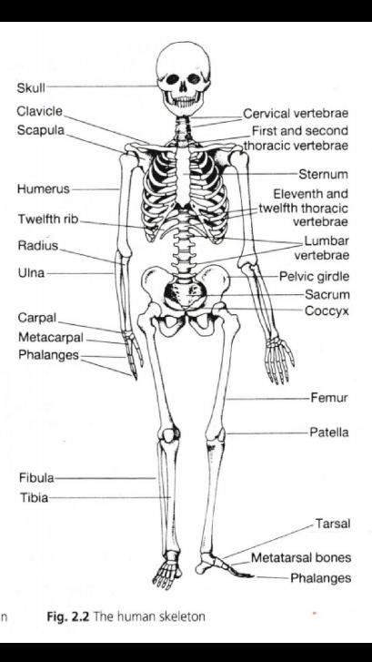 biology 8